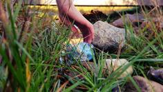 Badr og William - Det er cool at rydde op i naturen.