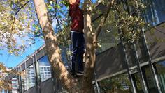 Baki og Gustav - Det er cool at klatre i træer i stedet for at ryge dem