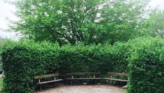Af Jenusan, Emma og Wael - Det er Cool at passe på naturen !